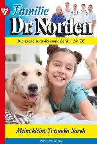 Cover Familie Dr. Norden 735 – Arztroman