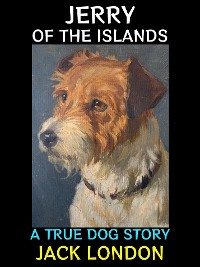 Cover Jerry of the Islands