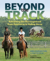 Cover Beyond the Track