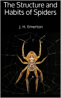Cover The Structure and Habits of Spiders