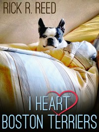 Cover I Heart Boston Terriers