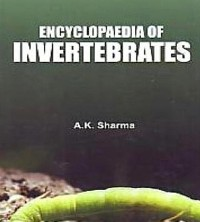 Cover Encyclopaedia Of Invertebrates