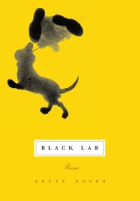 Cover Black Lab