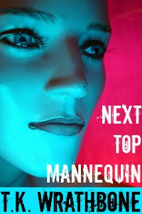 Cover Next Top Mannequin