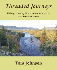 Cover Threaded Journeys