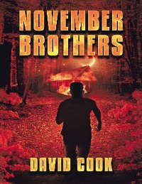 Cover November Brothers