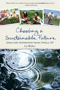 Cover Choosing a Sustainable Future