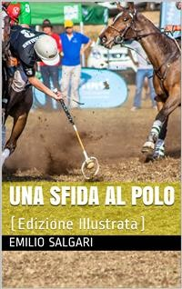 Cover Una sfida al Polo