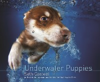 Cover Underwater Puppies