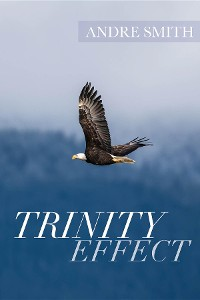 Cover Trinity Effect
