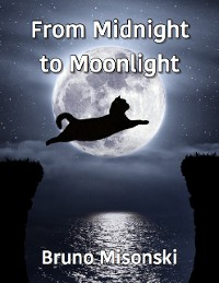Cover From Midnight to Moonlight