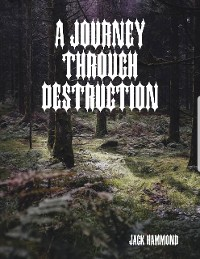 Cover A Journey Through Destruction