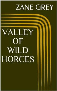 Cover Valley of Wild Horses