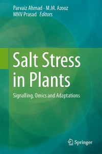 Cover Salt Stress in Plants