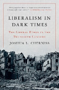 Cover Liberalism in Dark Times