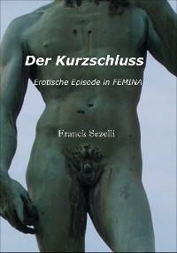 Cover Der Kurzschluss