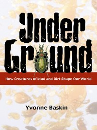 Cover Under Ground