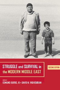 Cover Struggle and Survival in the Modern Middle East