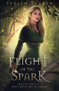 Cover Flight of the Spark