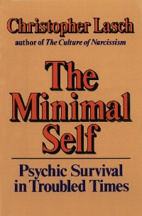 Cover The Minimal Self: Psychic Survival in Troubled Times