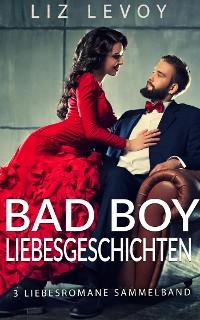 Cover Bad Boy Liebesgeschichten