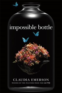 Cover Impossible Bottle