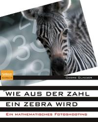 Cover Wie aus der Zahl ein Zebra wird