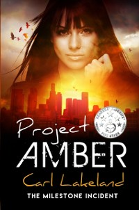 Cover Project Amber
