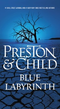 Cover Blue Labyrinth