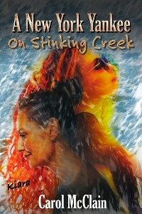 Cover A New York Yankee on Stinking Creek