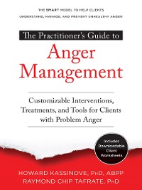 Cover The Practitioner's Guide to Anger Management
