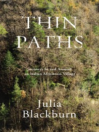 Cover Thin Paths