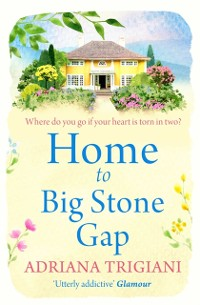 Cover Home to Big Stone Gap