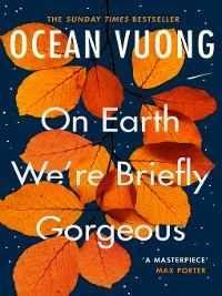 Cover On Earth We're Briefly Gorgeous