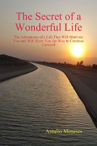 Cover The Secret of a Wonderful Life: The Adventures of a Life That Will Motivate You and Will Show You the Way to Continue Forward