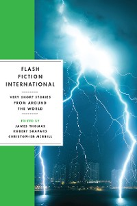 Cover Flash Fiction International: Very Short Stories from Around the World
