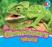 Cover A Chameleon's World