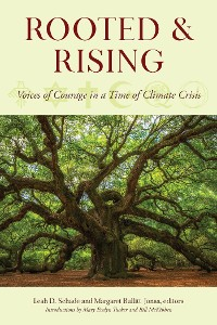 Cover Rooted and Rising
