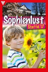 Cover Sophienlust Staffel 17 – Familienroman