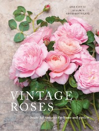 Cover Vintage Roses