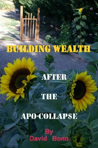 Cover BUILDING WEALTH AFTER THE APO-COLLAP$E