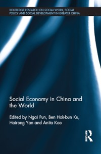 Cover Social Economy in China and the World