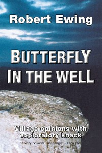 Cover Butterfly in the Well