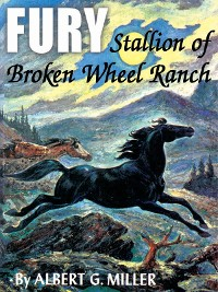 Cover Fury: Stallion of Broken Wheel Ranch