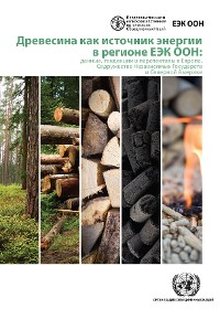 Cover Wood Energy in the ECE Region (Russian language)
