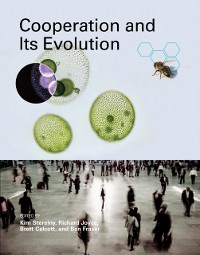 Cover Cooperation and Its Evolution