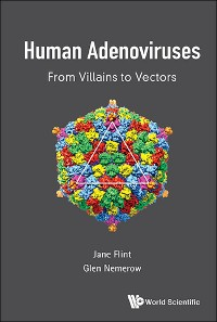 Cover Human Adenoviruses: From Villains To Vectors