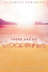 Cover There Are No Goodbyes