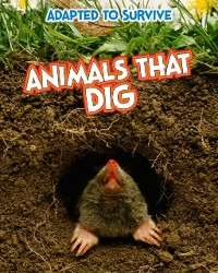 Cover Adapted to Survive: Animals that Dig