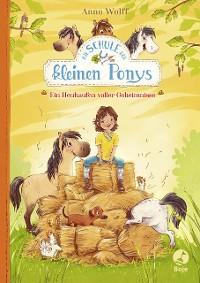 Cover Die Schule der kleinen Ponys - Ein Heuhaufen voller Geheimnisse